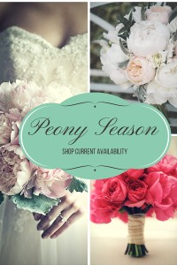 Shop PeonyHotline for all your Peony Needs